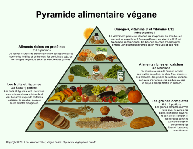 Pyramide-alimentation.png